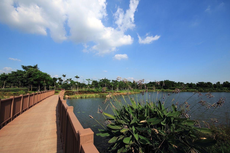 大亚湾红树林公园_各类公园-北林苑